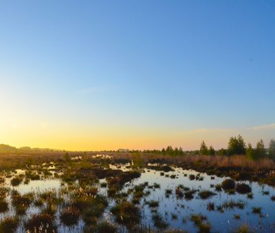 Moorlandschaft im Sonnenaufgang